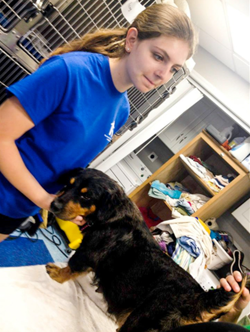 Rachel Lehner, from Warren, is a sophomore at Watchung Hills Regional High School. She began volunteering with Home for Good in 2014 and has fostered nearly 50 dogs.