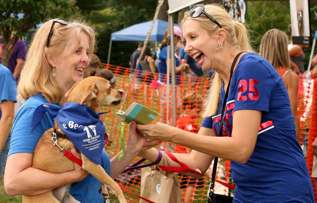 bark-a-que-to-find-rescue-dogs-forever-homes