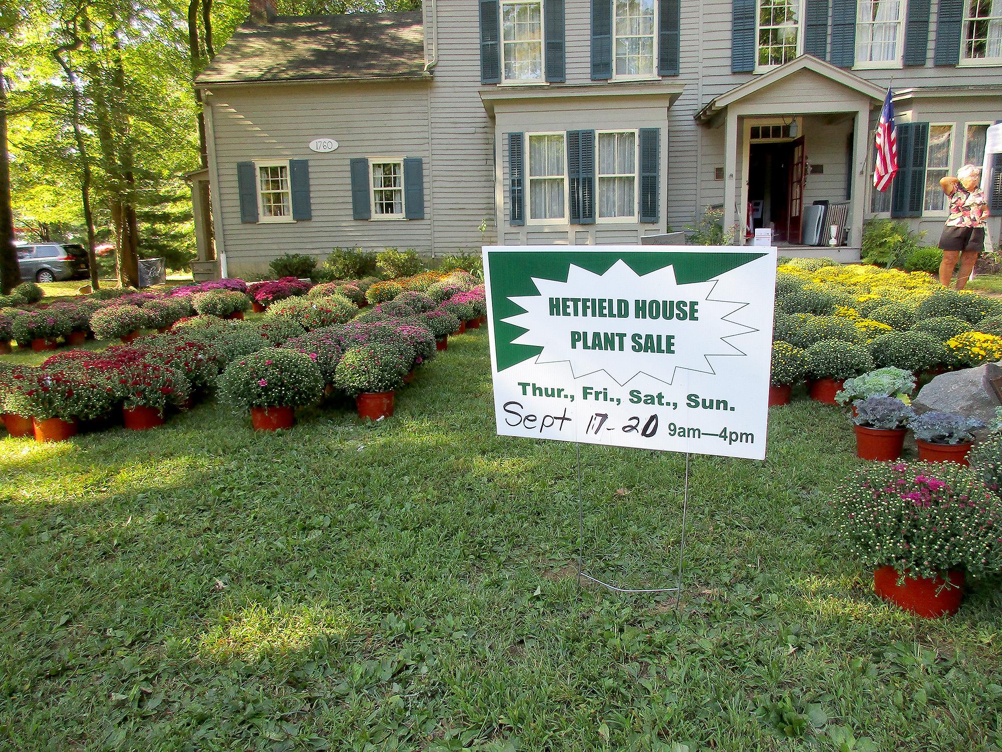 Renna Media Hetfield House Annual Fall Mum And Plant